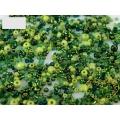 Zelený mix - skleněné korálky - balení 50 g