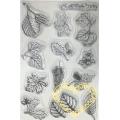 Gelová razítka - listy (10 x 15 cm)