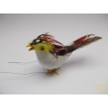 Ptáček na drátku