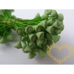 Zelené pestíky trychtýřky - 36 ks