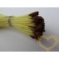 Pestíky květinové oboustranné hnědé 3 mm - 144 ks