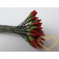Červené špičaté pestíky - 72 ks