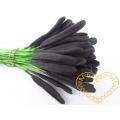Černozelené podlouhlé pestíky - tyčinky 48 ks