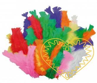 Barevné peří z krocana - 60 ks. Jednotlivá pírka jsou dlouhá cca 13-17 cm. Mají široké uplatnění jak při aranžování a výrobě dekorací, tak také např. při tvoření figurek ptáčků, indiánských čelenek apod.