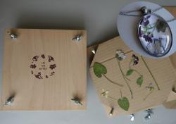 Dřevěný lis na rostliny Vám usnadní práci při lisování květů, listů či celých rostlinek. Povolením 4 šroubků lze odendat vrchní dřevěnou desku a rostliny vkládat mezi jednotlivé destičky z papírové lepenky. Poté lze opět desku přiklopit a šrouby regu